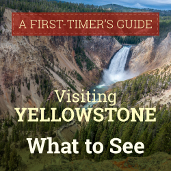 Infographic: What to See When Visiting Yellowstone