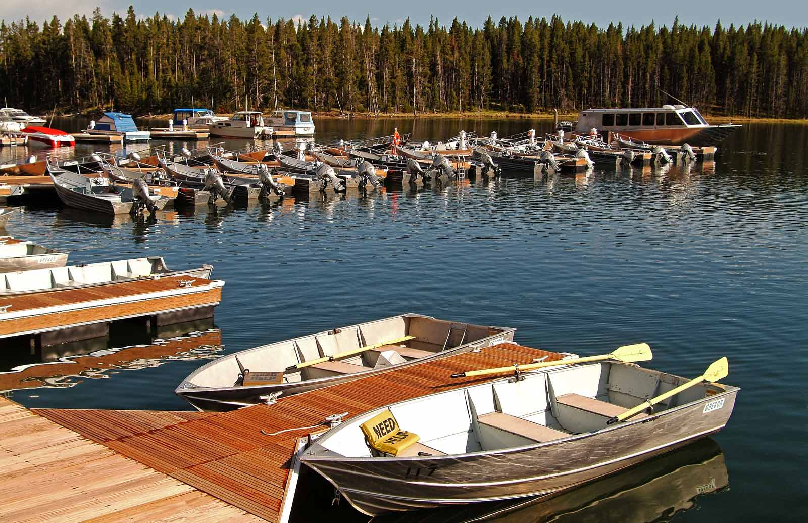 Fleet of boats tied up in a marina