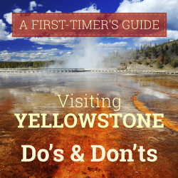Infographic: Do's & Don'ts For Visiting Yellowstone