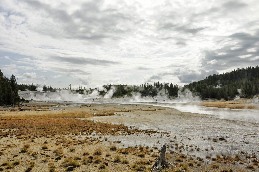 Long shot of a geyser basin