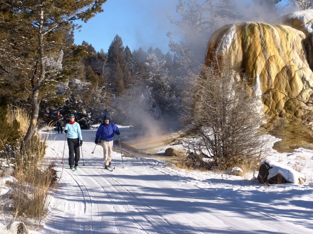 how to plan a trip to yellowstone national park