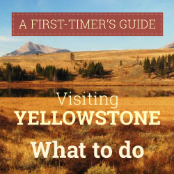 Infographic: What to Do in Yellowstone