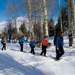 Winter Packages at Yellowstone
