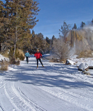 Skiers on groomed trail