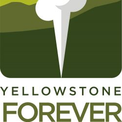 Introducing...Yellowstone Forever