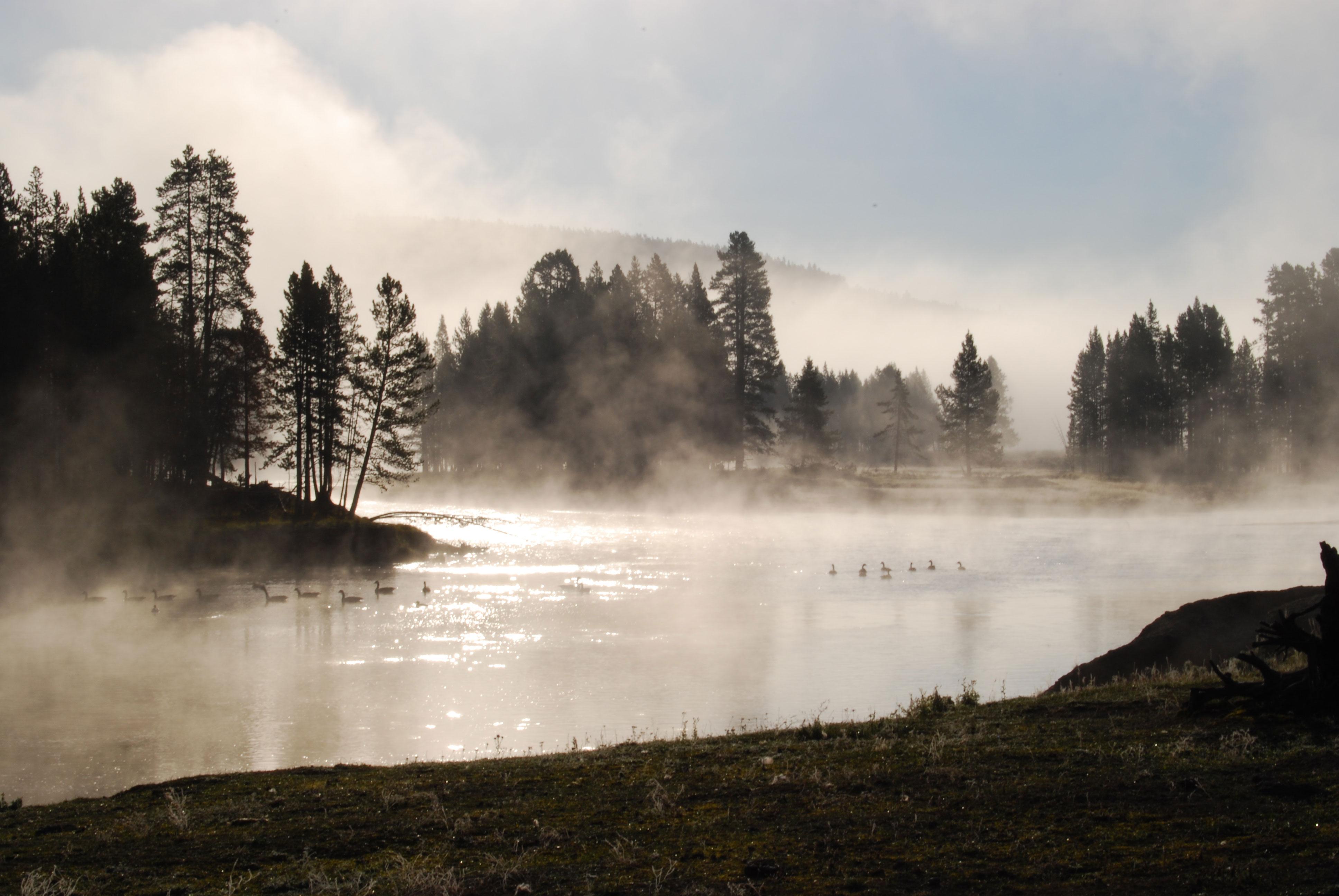 Yellowstone River Sunrise Mist
