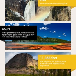 Infographic: Yellowstone By The Numbers
