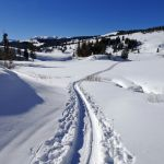 Cross-country ski tracks at the top of Snow Pass