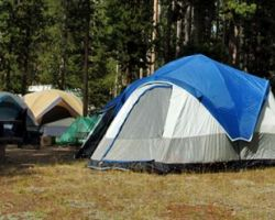 Tents at Bridge Bay campground