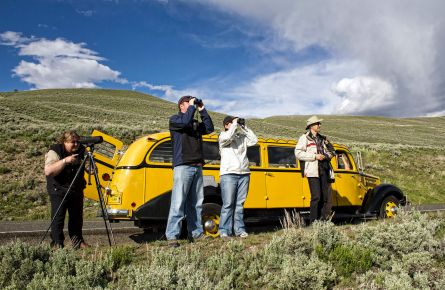 Group with binoculars on Wildlife tour