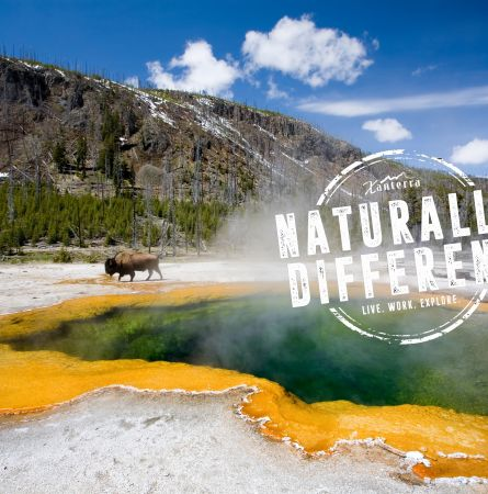 #YellowstoneJobs Instagram Contest Winners