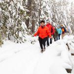 Exploring the snowy boardwalks at Norris Geyser Basin