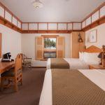 Old Faithful Snow Lodge Premium Lodge Room