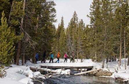 Snowshoe tour crossing stream
