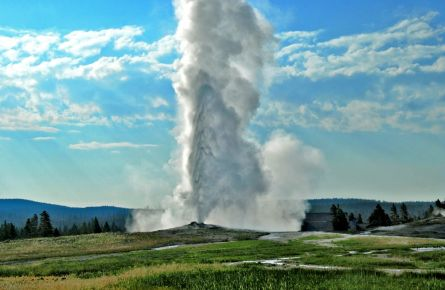 Erupting geyser at Old Faithful in the summer