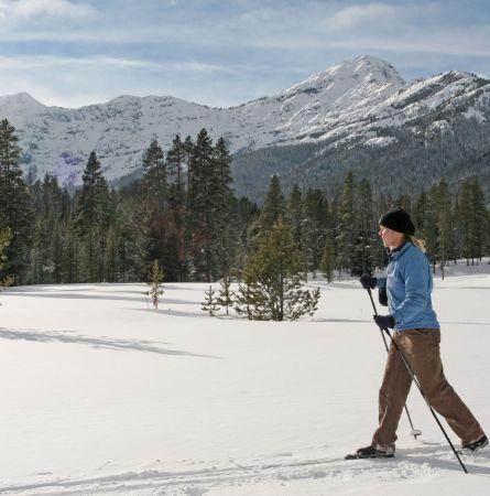 Skier on Bannock Trail