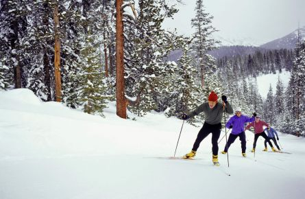 Cross-country skiers on the trail at Yellowstone
