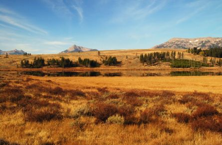 Fall Swan Lake Flats
