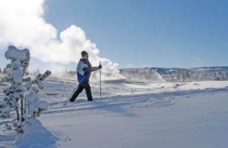 Man cross-country skiing at Old Faithful