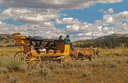 Passengers on stagecoach in the field