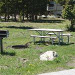 Campsite at Bridge Bay Campground