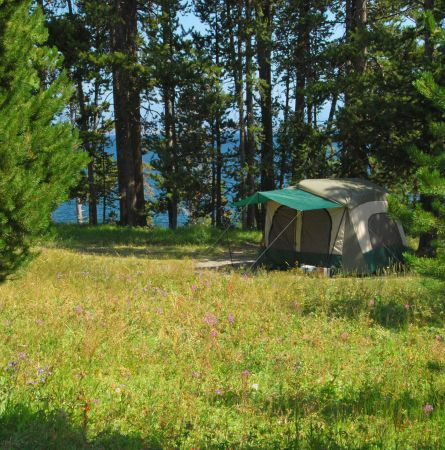 Camping Guide to Yellowstone [Infographic]
