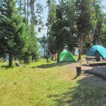 Tents at Bridge Bay Campground
