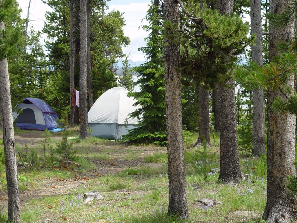 camping | yellowstone national park lodges