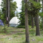 Tents at Grant Village Campground