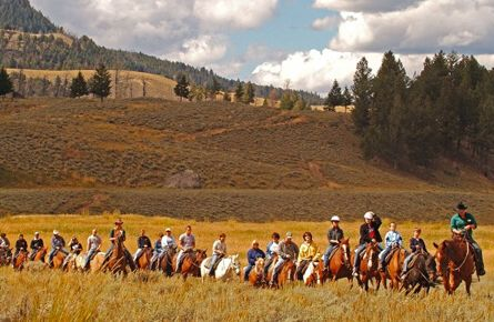Trail ride through the field