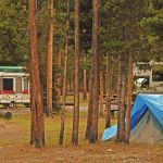 Tents at Madison Campground