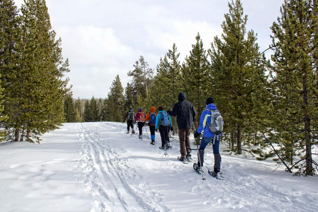 A group of six people take a winter snowshoe tour in Yellowstone National Park