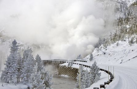 Fun Facts about Winter in Yellowstone