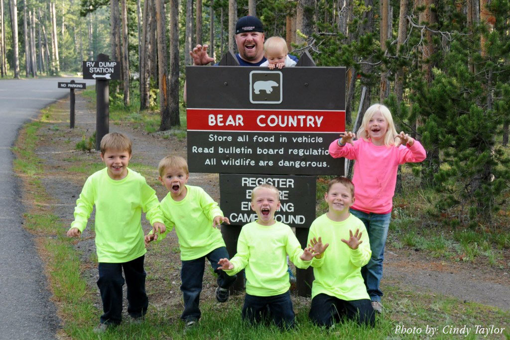 bear-country_cindy-taylor