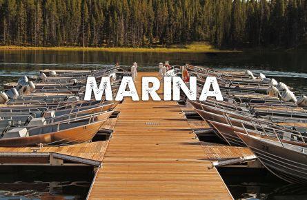 Boats tied up at a marina.