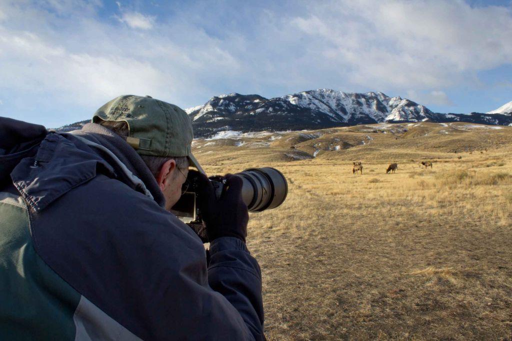 Photographer taking photos of wildlife at Yellowstone
