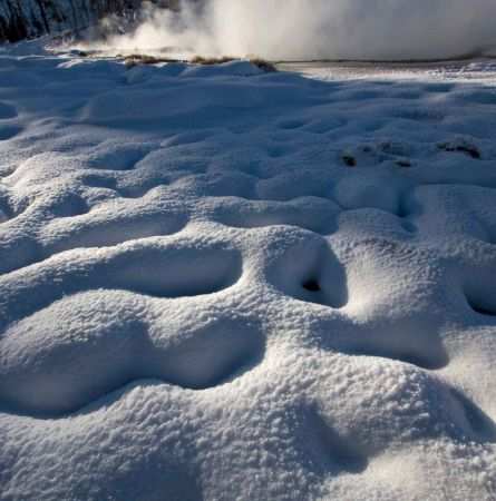 Snow-covered Yellowstone
