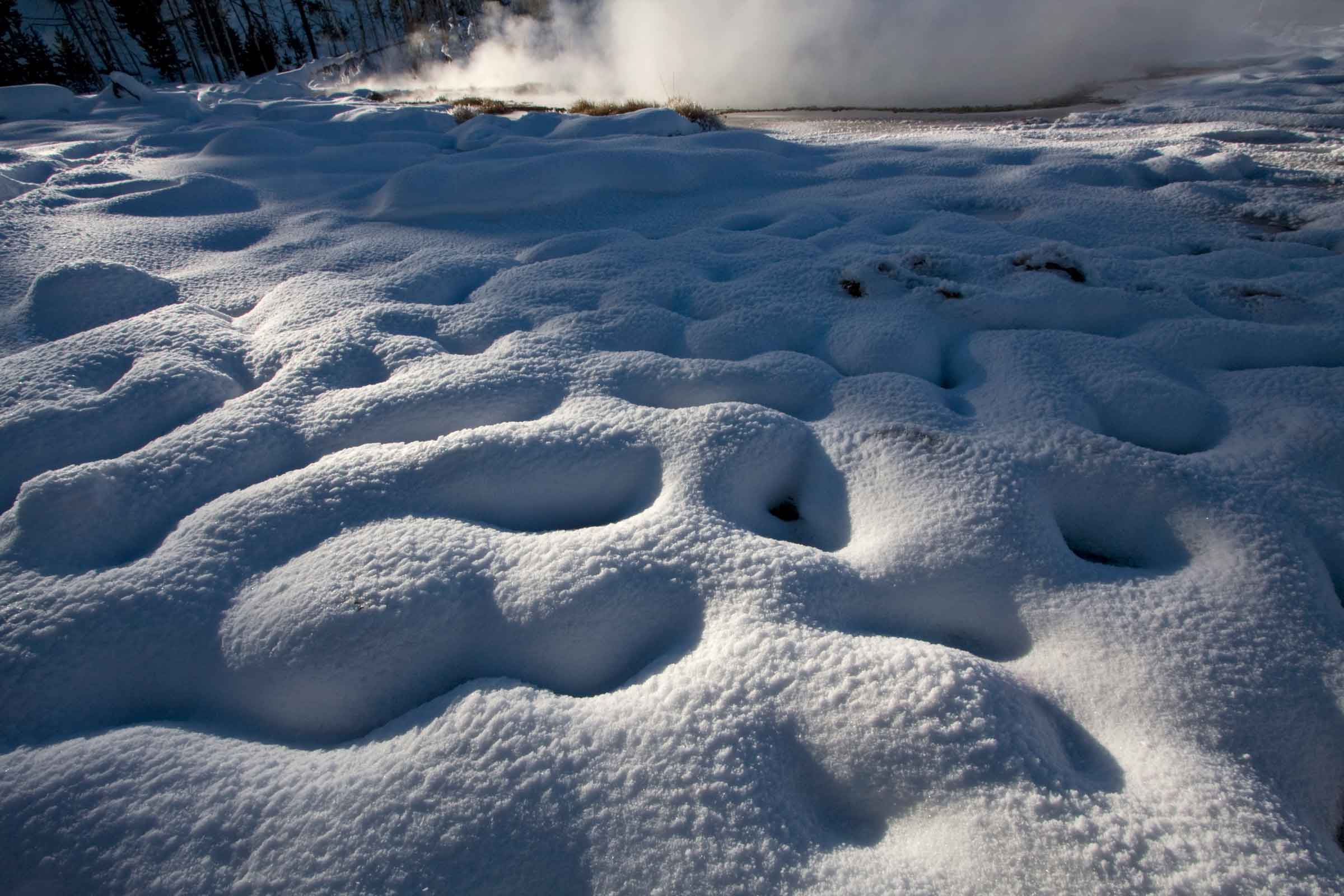 snow-yellowstone