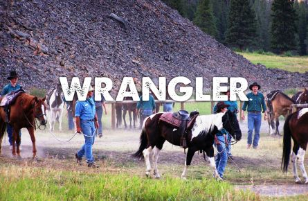 Horses and their wranglers.