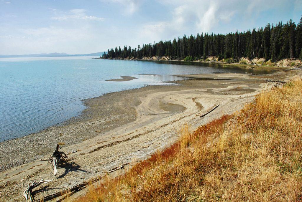 Yellowstone Lake shore