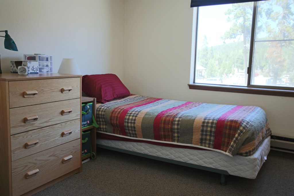 A dorm bed and chest of drawers