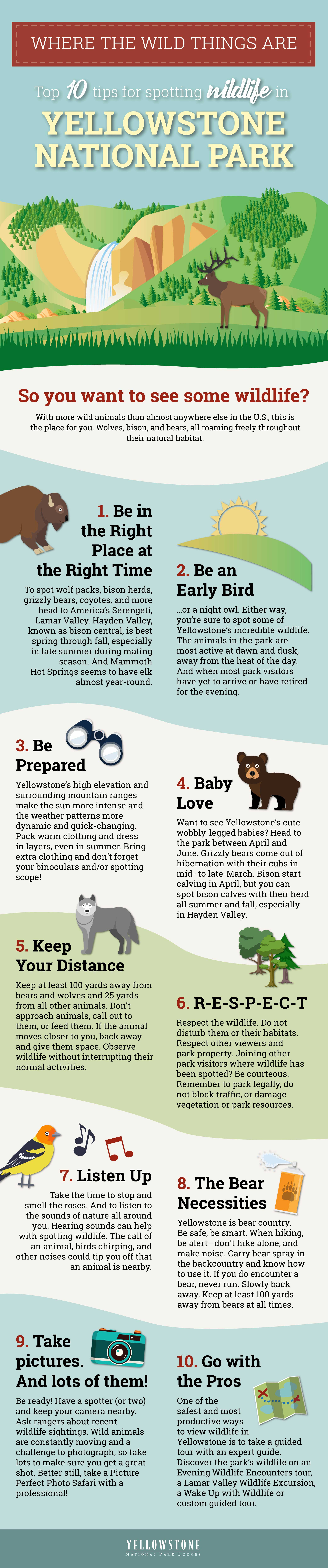 Where the Wild Things Are Infographic