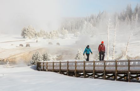 Get Outside: 4 Winter Sports and Adventures at Yellowstone