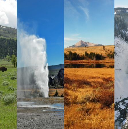 Guide to the Seasons in Yellowstone [Infographic]