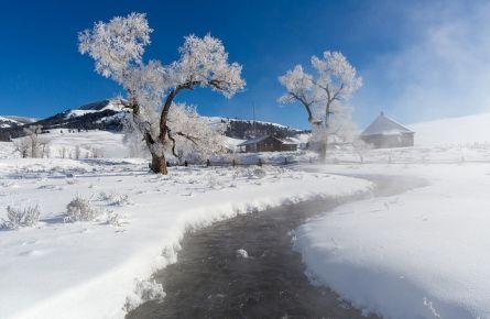 Stream, steam, trees in winter at Lamar Buffalo Ranch