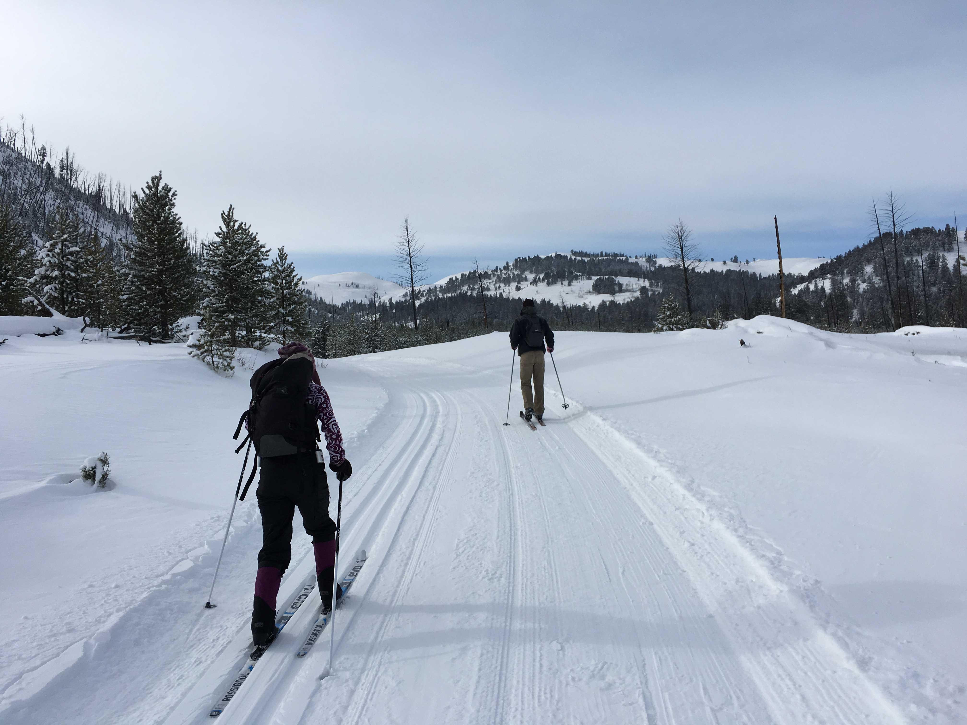 Blacktail Ski Trail