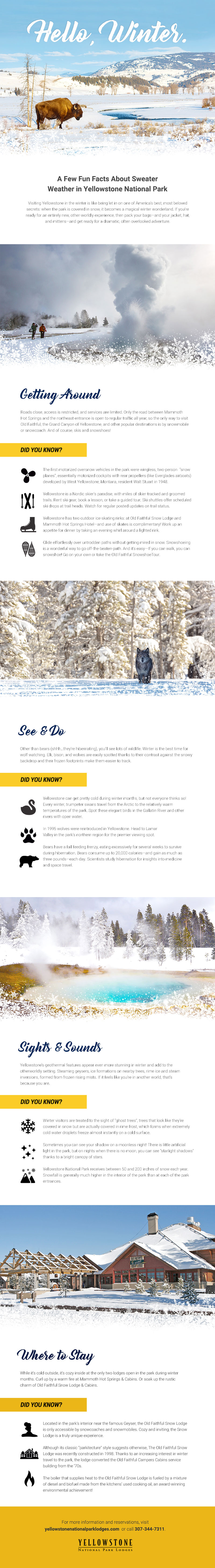 Yellowstone winter travel tips infographic