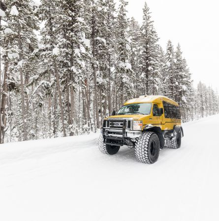 Yellowstone Snowcoaches: The Ultimate Ticket to Ride
