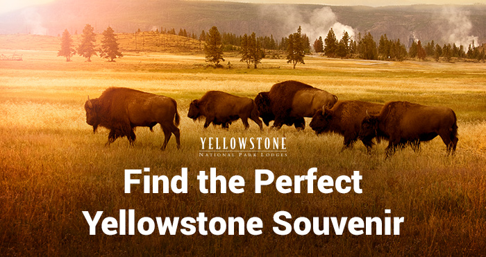 Choose your perfect Yellowstone souvenir.