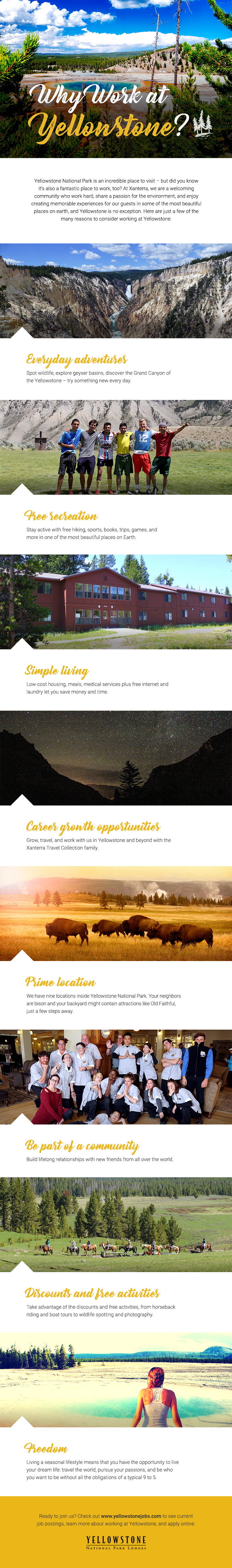 Infographic - Reasons to Work in Yellowstone